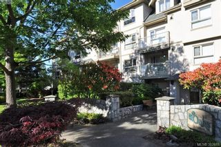 Photo 15: 302 1715 Richmond Ave in VICTORIA: Vi Jubilee Condo for sale (Victoria)  : MLS®# 789221