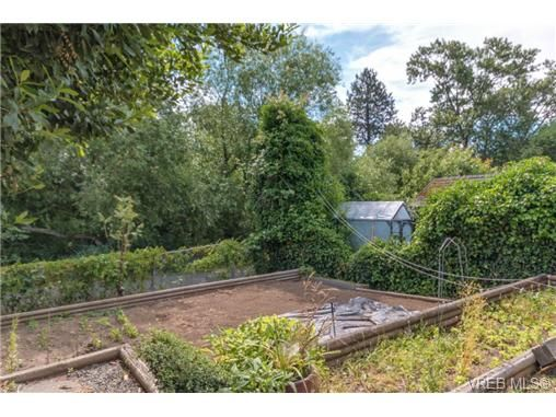 Photo 17: Photos: 3307 Wordsworth St in VICTORIA: SE Cedar Hill House for sale (Saanich East)  : MLS®# 734492