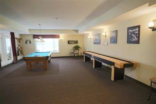 Photo 30: 209 511 QUEEN Street: Spruce Grove Condo for sale : MLS®# E4231377