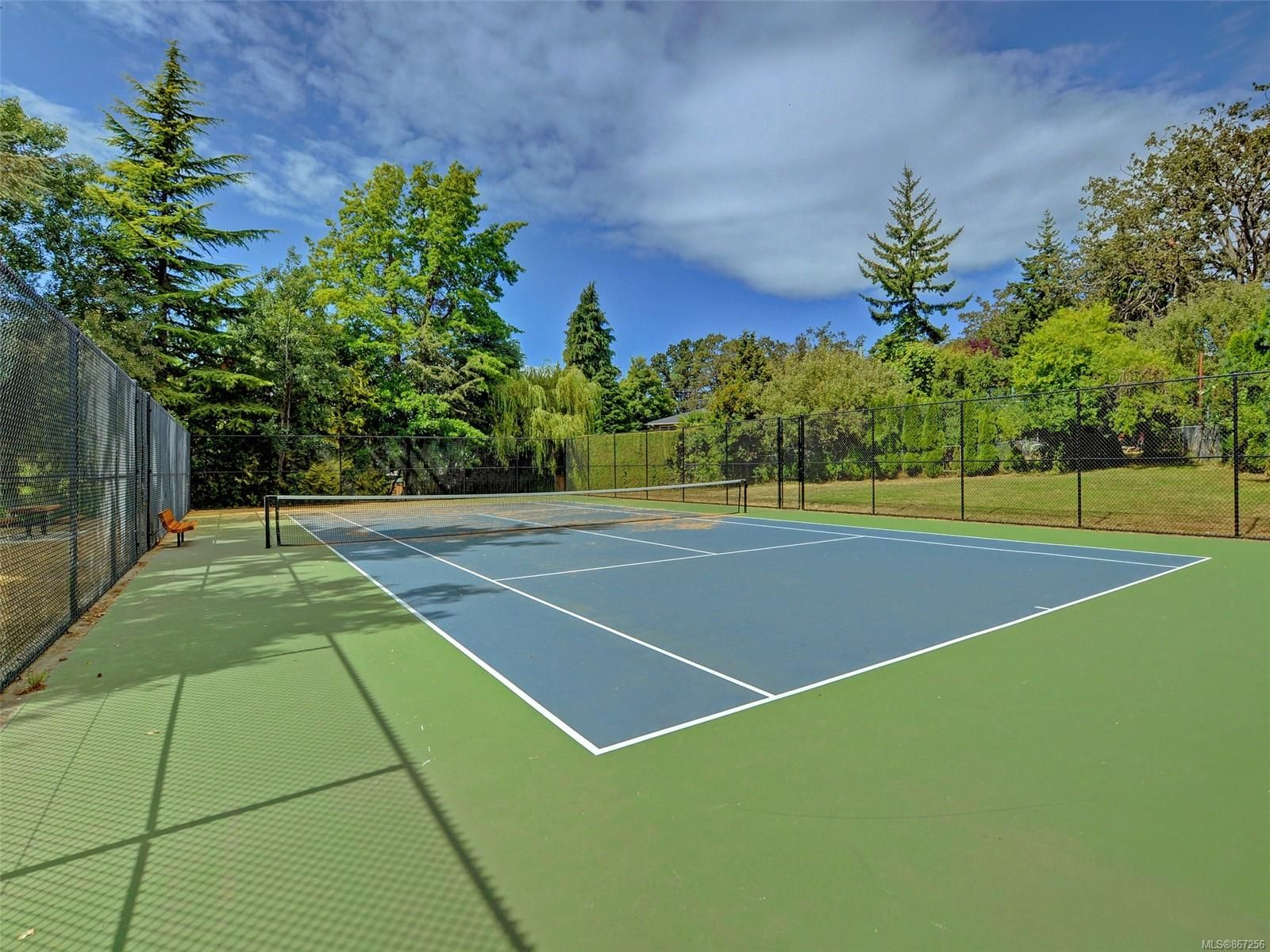 Photo 23: Photos: 5 869 Swan St in : SE Swan Lake Row/Townhouse for sale (Saanich East)  : MLS®# 867256
