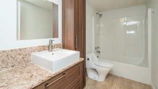 Photo 7: 211 20881 56 Avenue in Langley: Langley City Condo for sale : MLS®# R2569516