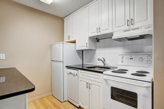 Photo 14: 107 835 19 Avenue SW in Calgary: Lower Mount Royal Condo for sale : MLS®# C4117697