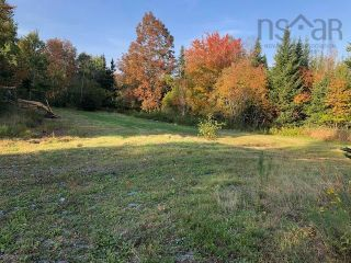Photo 5: 412 Lake Egmont Road in Lake Egmont: 105-East Hants/Colchester West Vacant Land for sale (Halifax-Dartmouth)  : MLS®# 202125759