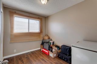 Photo 20: 11 Bedwood Place NE in Calgary: Beddington Heights Detached for sale : MLS®# A1118469