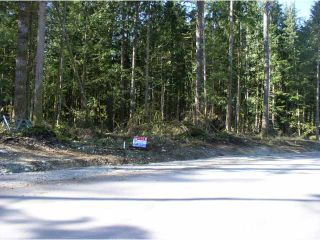 Photo 2: 12905 246TH Street in Maple Ridge: Websters Corners Land for sale : MLS®# V814107