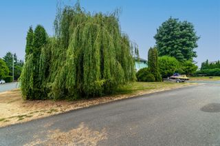 Photo 34: 117 Munson Rd in Campbell River: CR Campbell River Central House for sale : MLS®# 881890