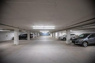 Photo 17: 403 1899 45 Street NW in Calgary: Montgomery Apartment for sale : MLS®# A1130510