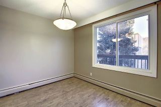 Photo 17: 201 7825 159 Street in Edmonton: Zone 22 Condo for sale : MLS®# E4225328