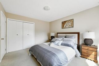 Photo 16: 4034 Elise Pl in : SE Lake Hill House for sale (Saanich East)  : MLS®# 886161
