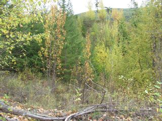 Photo 31: 80 Acres Creighton Valley Road, in Lumby: Vacant Land for sale : MLS®# 10239894