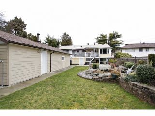 Photo 17: 14624 106TH AV in Surrey: Guildford House for sale (North Surrey)  : MLS®# F 1403182