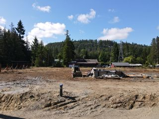 Photo 1: Lot 10 Williams St in : PQ Errington/Coombs/Hilliers Land for sale (Parksville/Qualicum)  : MLS®# 885206