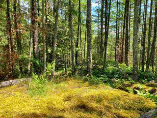 Photo 22: Lot 48 FLINT Road: Keats Island Land for sale (Sunshine Coast)  : MLS®# R2460854
