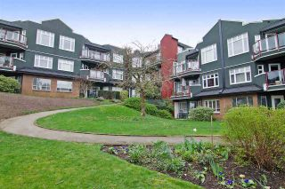 Photo 13: 216 121 W 29TH Street in North Vancouver: Upper Lonsdale Condo for sale : MLS®# R2045680