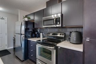 Photo 6: 155 1196 HYNDMAN Road in Edmonton: Zone 35 Condo for sale : MLS®# E4232334