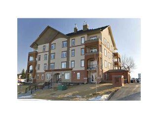 Photo 18: 102 2419 CENTRE Street NW in CALGARY: Tuxedo Condo for sale (Calgary)  : MLS®# C3515174