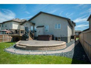 Photo 20: 78 Powder Ridge Drive in WINNIPEG: River Heights / Tuxedo / Linden Woods Residential for sale (South Winnipeg)  : MLS®# 1213397