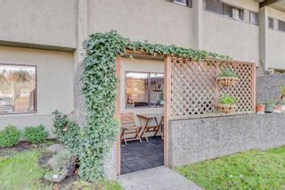 Photo 33: 5 477 Lampson St in : Es Old Esquimalt Condo for sale (Esquimalt)  : MLS®# 859012