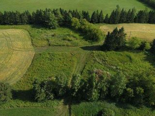 Photo 9: 294153 8th Line in Amaranth: Rural Amaranth Property for sale : MLS®# X4544385