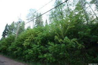 Photo 1: 156 Carwin Park Drive in Emma Lake: Lot/Land for sale : MLS®# SK846952