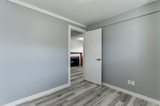 Photo 29: 23 Erin Meadows Court SE in Calgary: Erin Woods Detached for sale : MLS®# A1146245