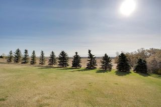 Photo 22: 290153 96 Street E: Rural Foothills County Detached for sale : MLS®# C4223460