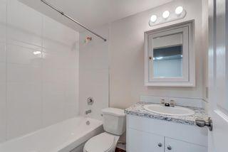 Photo 25: 4908 44 Avenue NE in Calgary: Whitehorn Semi Detached for sale : MLS®# A1129146