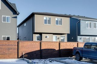 Photo 43: 361 Chinook Gate Close: Airdrie Detached for sale : MLS®# A1052473