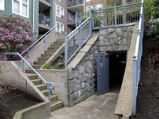 Photo 31: 309 3085 PRIMROSE Lane in LAKESIDE TERRACE: Home for sale : MLS®# V1112679