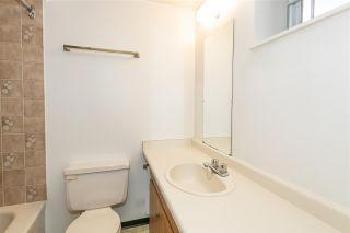 Photo 17: 7944 EDMONDS Street in Burnaby: East Burnaby 1/2 Duplex for sale (Burnaby East)  : MLS®# R2591860