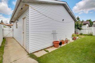 Photo 43: 3918 25 Avenue in Edmonton: Zone 29 House for sale : MLS®# E4250805