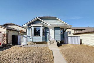 Photo 45: 132 Ventura Way NE in Calgary: Vista Heights Detached for sale : MLS®# A1081083