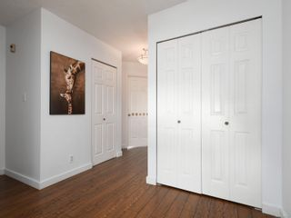 Photo 19: 12 2669 Shelbourne St in : Vi Jubilee Row/Townhouse for sale (Victoria)  : MLS®# 869567