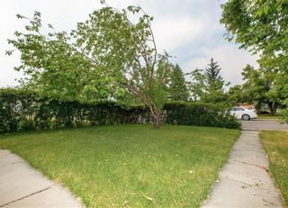 Photo 5: 2 6408 BOWWOOD Drive NW in Calgary: Bowness Row/Townhouse for sale : MLS®# C4241912