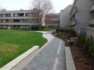 """Photo 3: 208 15313 19 Avenue in Surrey: King George Corridor Condo for sale in """"Village Terrece"""" (South Surrey White Rock)  : MLS®# R2258565"""