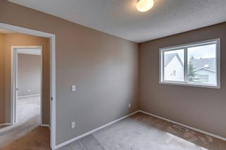 Photo 28: 131 Citadel Crest Green NW in Calgary: Citadel Detached for sale : MLS®# A1124177