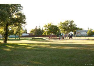 Photo 20: 213 Red Oak Drive in WINNIPEG: North Kildonan Residential for sale (North East Winnipeg)  : MLS®# 1320584