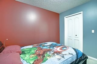 Photo 25: 328 Templeton Circle NE in Calgary: Temple Detached for sale : MLS®# A1074791