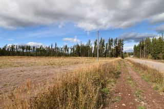 Photo 3: 10955 SKILLHORN Road: Telkwa Land Commercial for sale (Smithers And Area (Zone 54))  : MLS®# C8040361