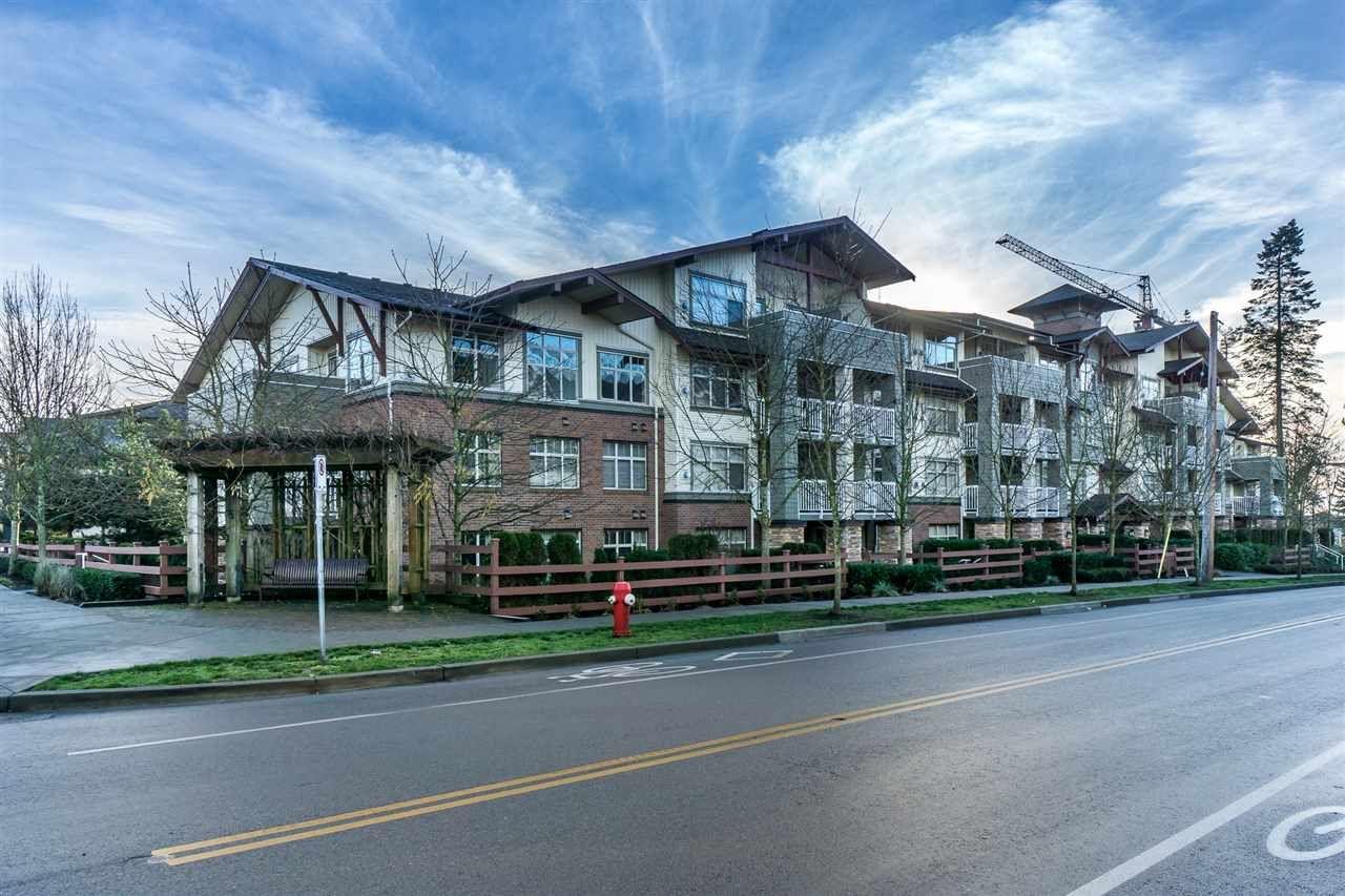 Main Photo: 205 6500 194 Street in Surrey: Clayton Condo for sale (Cloverdale)  : MLS®# R2228417