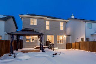 Photo 23: 560 Cougar Ridge Drive SW in Calgary: Cougar Ridge Detached for sale : MLS®# A1072318