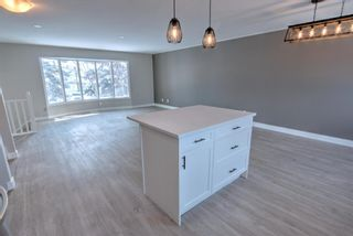 Photo 8: 547 Templeby Place NE in Calgary: Temple Detached for sale : MLS®# A1071164