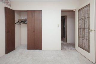 Photo 25: 21260 COOK Avenue in Maple Ridge: Southwest Maple Ridge House for sale : MLS®# R2530636