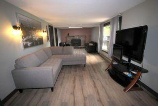 Photo 11: 217 Mcguire Beach Road in Kawartha Lakes: Rural Eldon House (Bungalow) for sale : MLS®# X5309905