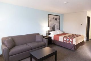 Photo 5: : Strathmore Hotel/Motel for sale : MLS®# A1058562