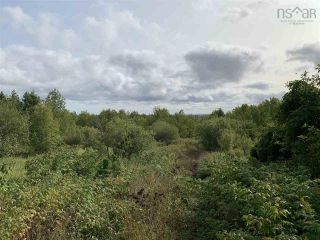 Photo 3: Lot Dan Fraser Road in Greenhill: 108-Rural Pictou County Vacant Land for sale (Northern Region)  : MLS®# 202120254