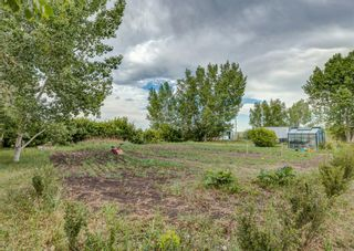 Photo 31: 284016 Range Road 275 in Rural Rocky View County: Rural Rocky View MD Detached for sale : MLS®# A1120975