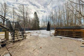 Photo 40: 231 WILSON Lane in Edmonton: Zone 22 House for sale : MLS®# E4234037