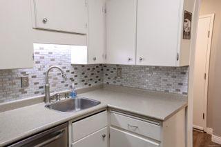 Photo 25: 101 853 Selkirk Ave in Esquimalt: Es Kinsmen Park Condo for sale : MLS®# 873411