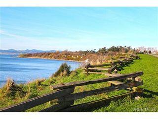 Photo 11: 203 429 Linden Ave in VICTORIA: Vi Fairfield West Condo for sale (Victoria)  : MLS®# 727710